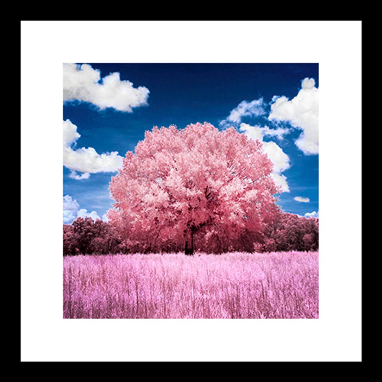 Square IR Photos