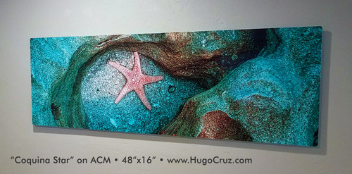 Coquina Star - 60x20 on ACM
