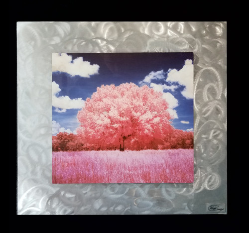 Pink Meadow - Aluminum on Burnished Aluminum