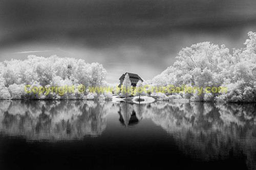 """""""Afar Serenity"""" ● Infrared Photography"""