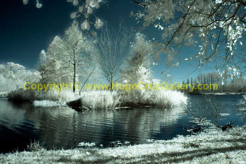 """""""Alice in Winterland"""" ● Infrared Photography"""