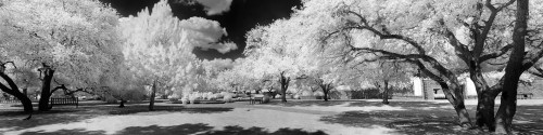 """Parque Blanco"" ● Infrared Photography"