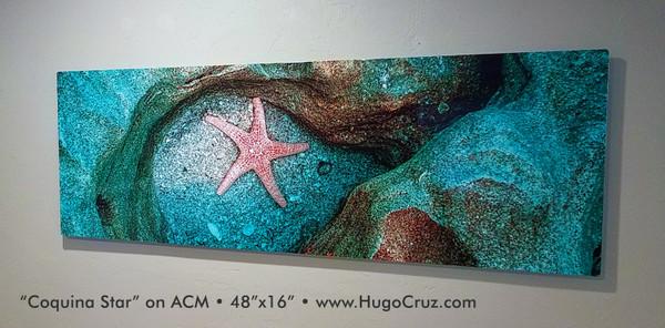 Coquina Star - 60x20 on ACM