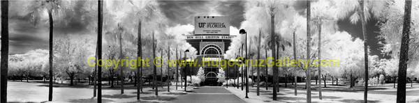 """Arena of Champions"" ● Infrared Photography"