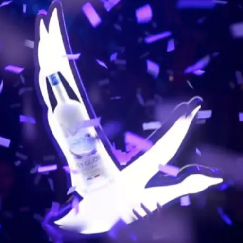 BOTTLE PRESENTER GREY GOOSE