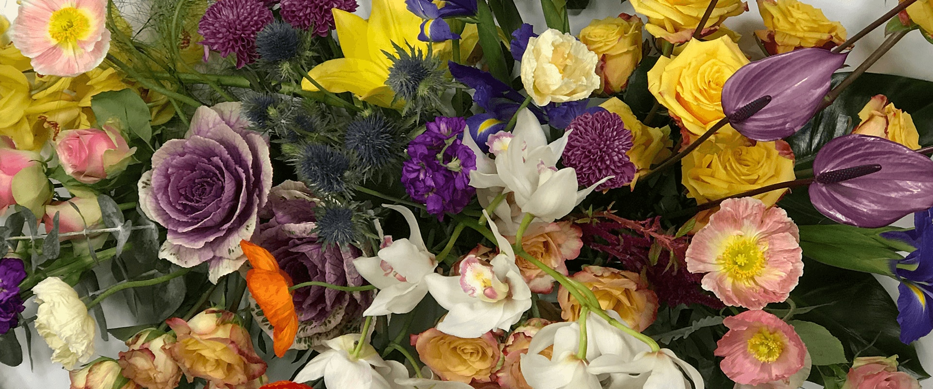 Neutral Bay Florist Order Flowers Sydneywide Cosmo S Florist