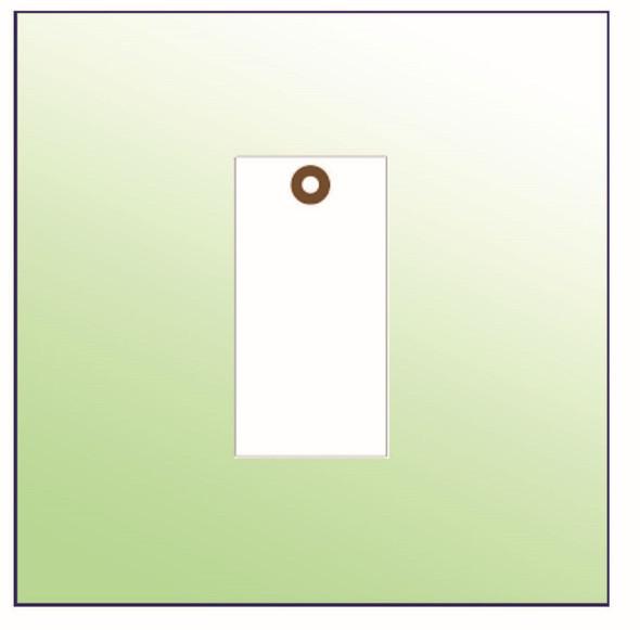 Blank Tyvek Tag Size 6 White