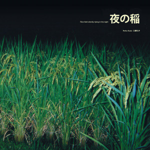 REIKO KUDO: Rice Field Silently Riping In The Night LP