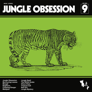 NINO NARDINI AND ROGER ROGER: Jungle Obsession LP