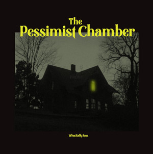THE PESSIMIST CHAMBER: What Sally Saw Cassette