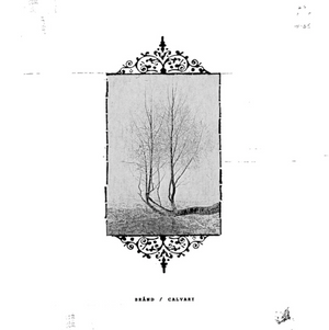 BRÅND / CALVARY: Split LP
