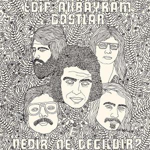 EDIP AKBAYRAM & DOSTLAR: Nedir Ne Degildir? LP