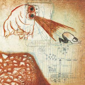DEERHOOF: Future Teenage Cave Artists (Blood) LP