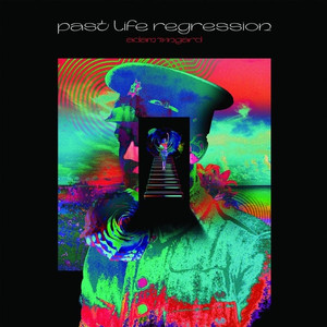 ADAM WINGARD: Past Life Regression LP