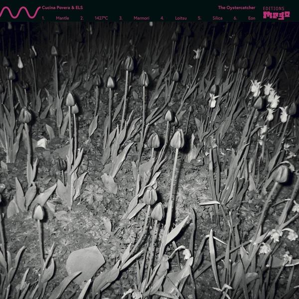 CUCINA POVERA & ELS: The Oystercatcher LP