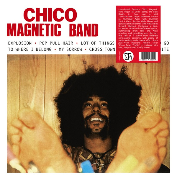 CHICO MAGNETIC BAND: Chico Magnetic Band LP