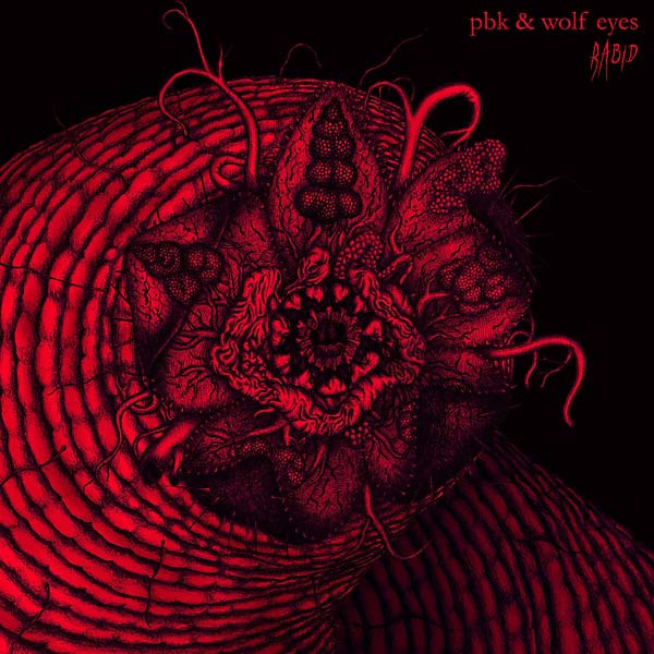 PBK & WOLF EYES: Rabid LP
