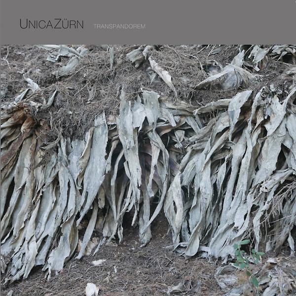 UNICAZURN: Transpandorem LP