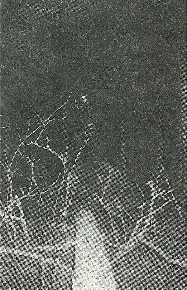 MORTIIS: The Song of a Long Forgotten Ghost Cassette