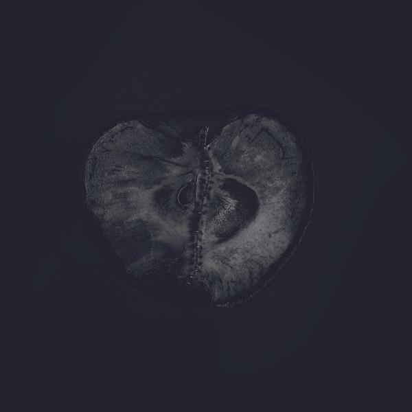 SÁDON / TREHA SEKTORI: Symphony Of Dying LP
