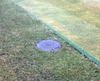 Bowling Green Sprinkler