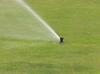 Hunter Pop-up Sprinkler
