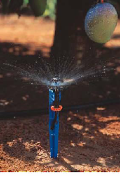 Spray Sprinkler Watering Kit