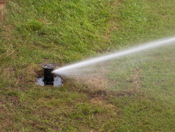 Sprinkler on Croquet Court