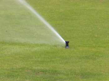 Hunter Pop-up Sprinkler