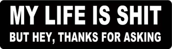 MY LIFE IS SHIT BUT HEY, THANKS FOR ASKING Motorcycle Helmet Sticker