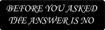 Before You Asked The Answer Is No Motorcycle Helmet Sticker