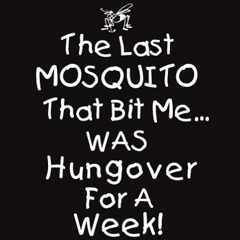 the last mosquito that bit me was hungover for a week