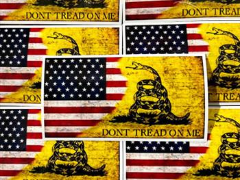 Don't Tread on Me Sticker 2nd Amendment Computer Sticker Gun Safe Sticker