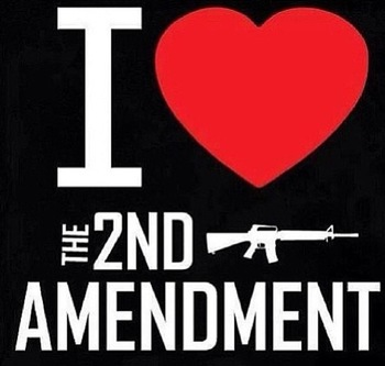 I love the 2nd Amendment Shirt