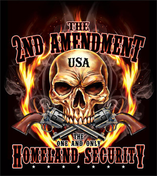 The Second Amendment the one and only Homeland Security Shirt