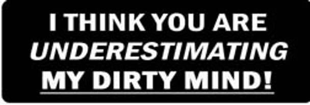 I THINK YOU ARE UNDERSTIMATING MY DIRTY MIND! Motorcycle Helmet Sticker