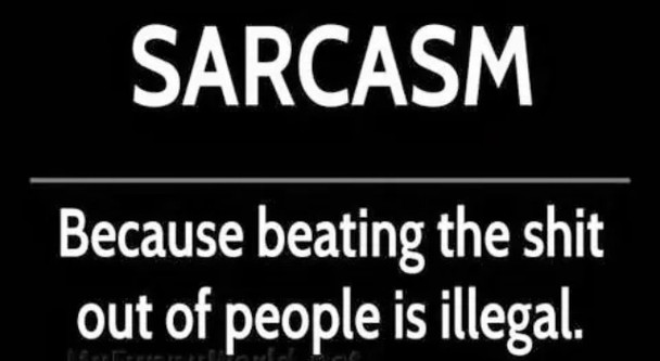 Sarcasm Because Beating The Shit Out Of People Is Illegal T-Shirt