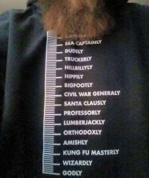 Beard Measurement Scale