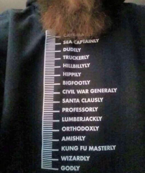 Beard Measurement Scale