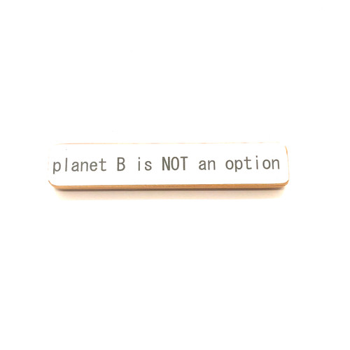 Planet B is Not an Option Magnet