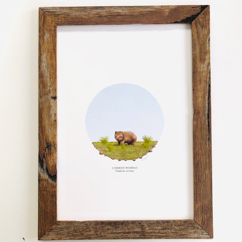 Common Wombat Archival Print A4