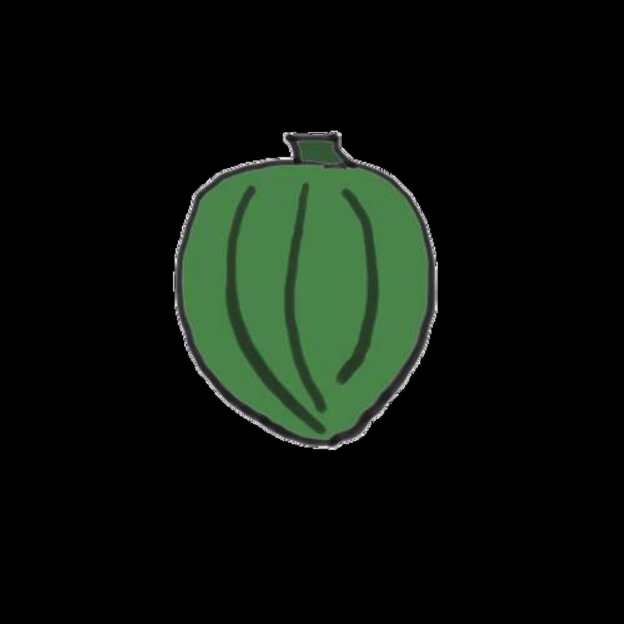 Anna Swartz Hubbard Squash - Organic