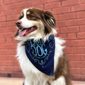 Crag Dog Bandana