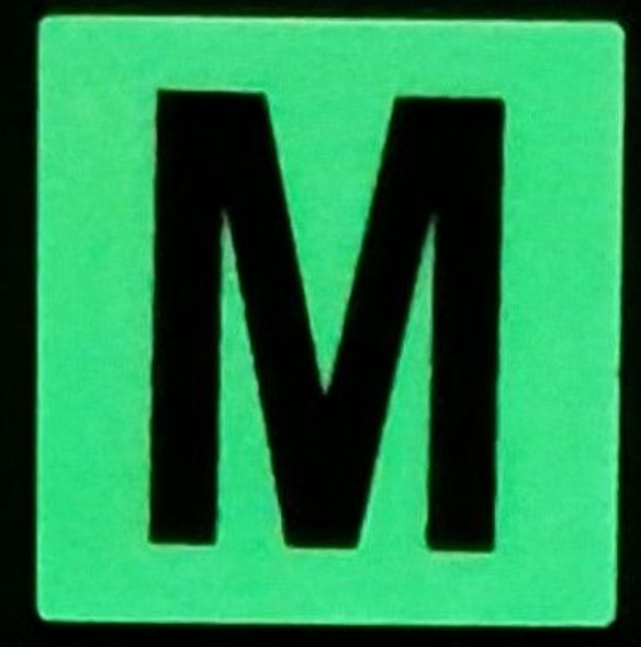 PHOTOLUMINESCENT DOOR NUMBER M SIGN GLOW IN TH  Sign