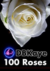 DBKaye - 100 Roses