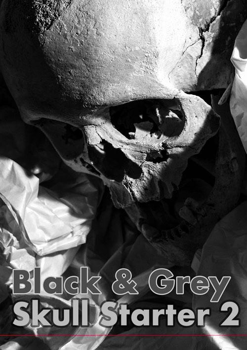 BG Skull starter 2 Cover.jpg