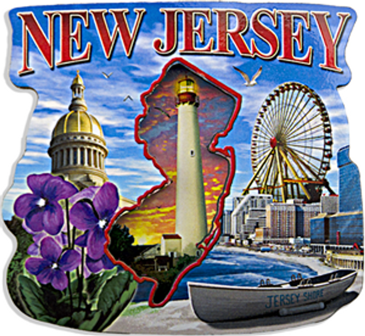 NJ Montage Fridge Magnet