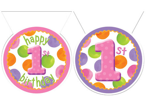 1st Birthday Girl Dots Flag Banner 12ft