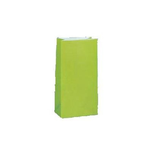 Paper Loot Bags Lime Green (12)