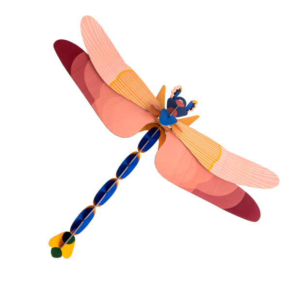 Limited Edition Dragonfly